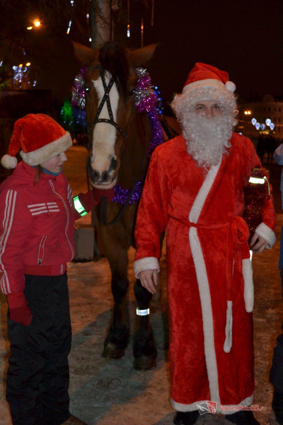 И даже лошадь со световозвращающим браслетом (глимклипом)