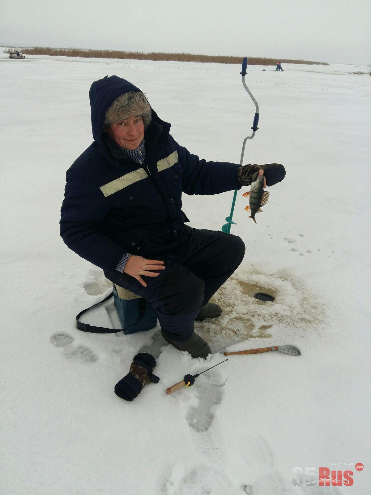 ловить налима в вологодской области