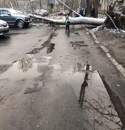 Катаклизмы природы в Вологодской области | Происшествия ДТП